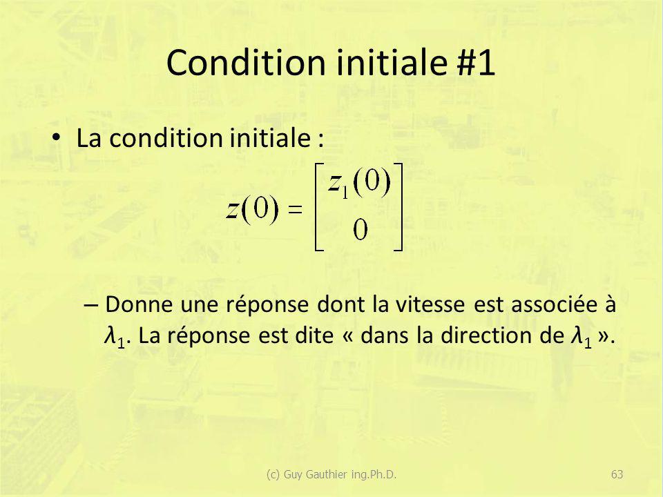 Condition initiale #1 La condition initiale : – Donne une réponse dont la vitesse est associée à λ 1. La réponse est dite « dans la direction de λ 1 »