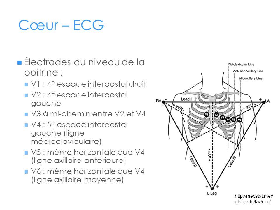 Cœur – ECG Électrodes au niveau de la poitrine : V1 : 4 e espace intercostal droit V2 : 4 e espace intercostal gauche V3 à mi-chemin entre V2 et V4 V4 : 5 e espace intercostal gauche (ligne médioclaviculaire) V5 : même horizontale que V4 (ligne axillaire antérieure) V6 : même horizontale que V4 (ligne axillaire moyenne) http://medstat.med.