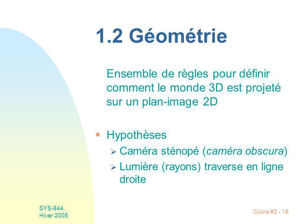 SYS-844 Hiver 2005 Cours #2 - 18 1.2 Géométrie Ensemble de règles pour définir comment le monde 3D est projeté sur un plan-image 2D Hypothèses Caméra