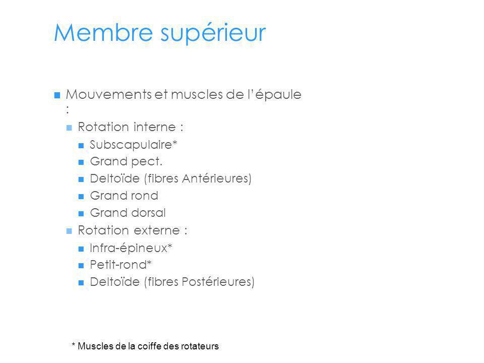 Membre supérieur Mouvements et muscles de lépaule : Rotation interne : Subscapulaire* Grand pect.