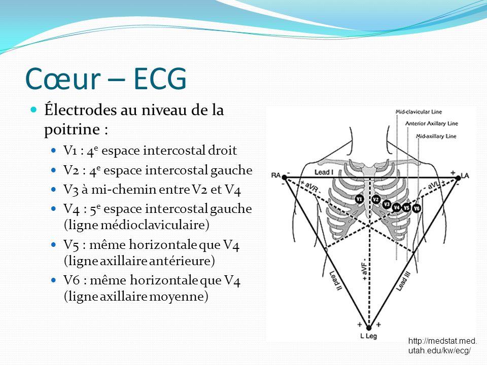 Cœur – ECG Électrodes au niveau de la poitrine : V1 : 4 e espace intercostal droit V2 : 4 e espace intercostal gauche V3 à mi-chemin entre V2 et V4 V4