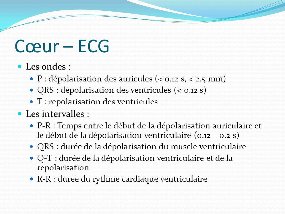 Cœur – ECG Les ondes : P : dépolarisation des auricules (< 0.12 s, < 2.5 mm) QRS : dépolarisation des ventricules (< 0.12 s) T : repolarisation des ve