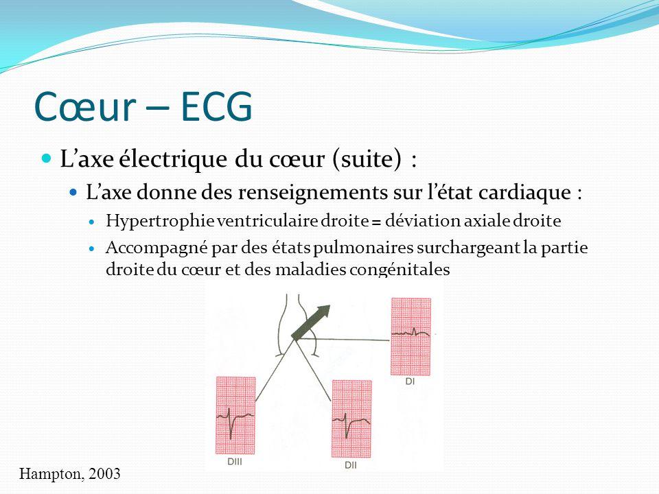 Cœur – ECG Laxe électrique du cœur (suite) : Laxe donne des renseignements sur létat cardiaque : Hypertrophie ventriculaire droite = déviation axiale