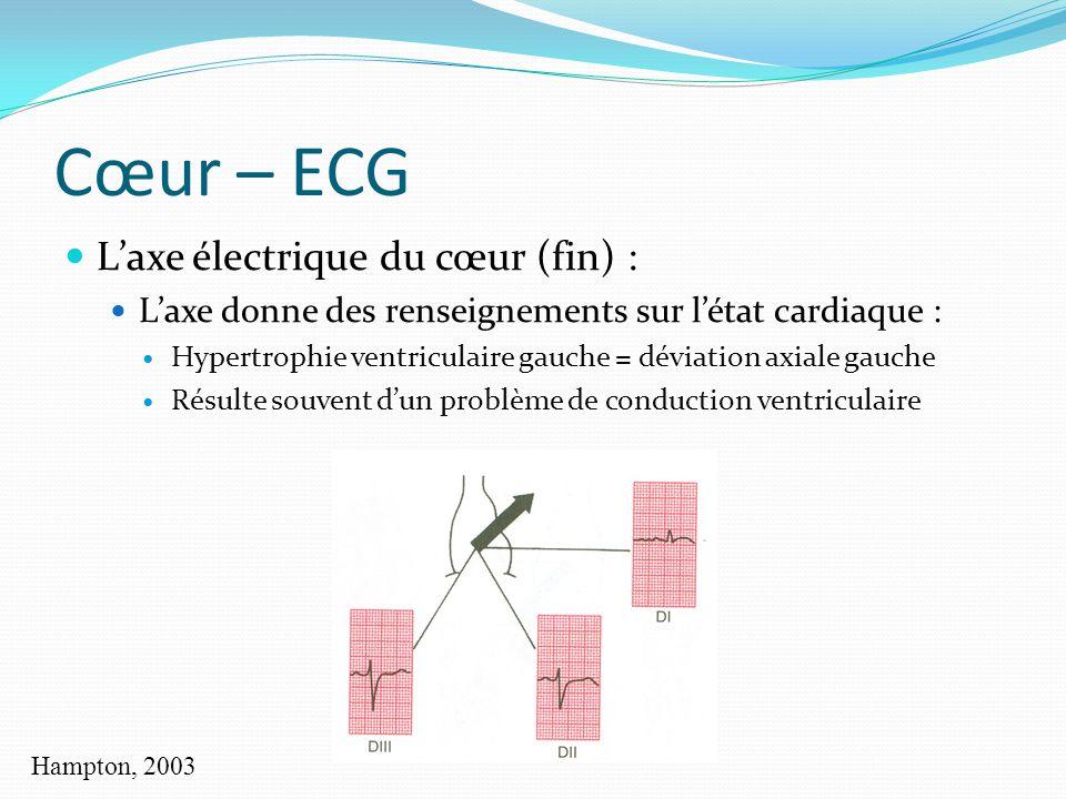 Cœur – ECG Laxe électrique du cœur (fin) : Laxe donne des renseignements sur létat cardiaque : Hypertrophie ventriculaire gauche = déviation axiale ga