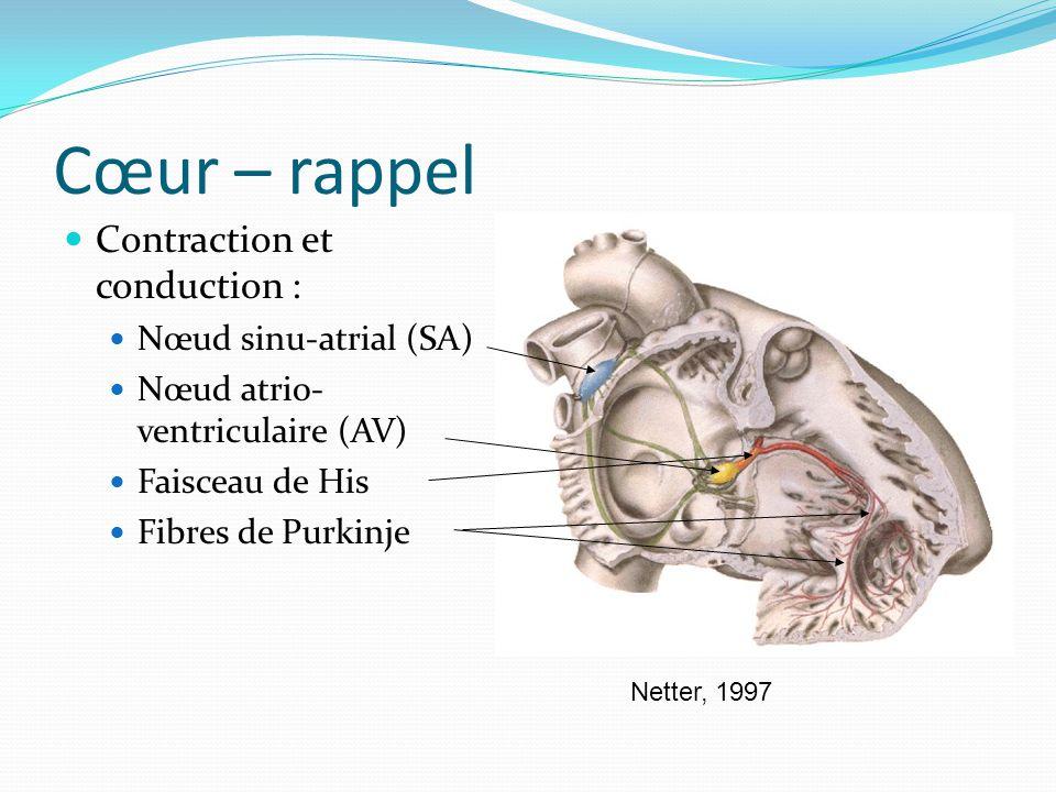 Cœur – ECG Les ondes : P : dépolarisation des auricules (< 0.12 s, < 2.5 mm) QRS : dépolarisation des ventricules (< 0.12 s) T : repolarisation des ventricules Les intervalles : P-R : Temps entre le début de la dépolarisation auriculaire et le début de la dépolarisation ventriculaire (0.12 – 0.2 s) QRS : durée de la dépolarisation du muscle ventriculaire Q-T : durée de la dépolarisation ventriculaire et de la repolarisation R-R : durée du rythme cardiaque ventriculaire