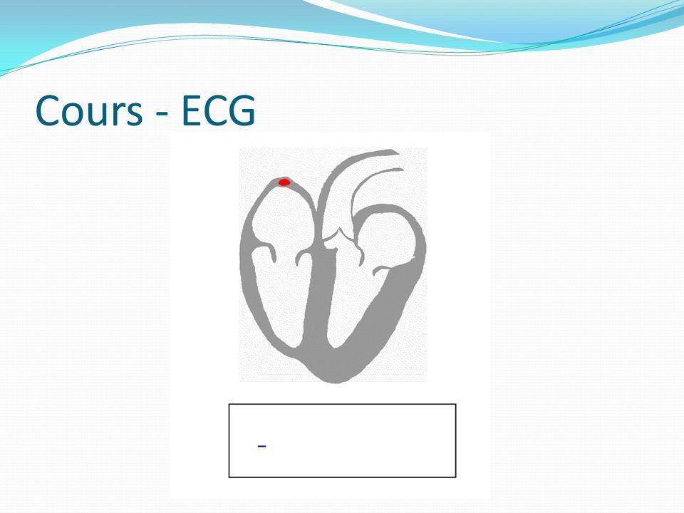 Cœur – ECG Cest une appréciation électrique de lactivité cardiaque, elle précède toujours lactivité musculaire du cœur Se mesure grâce à la pose délectrodes sur la peau qui permettent de mesurer la différence de potentiel des cellules myocardiques