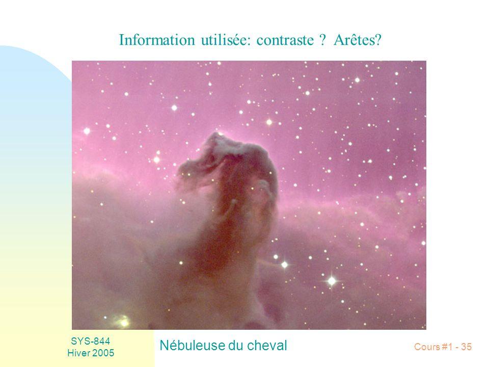 SYS-844 Hiver 2005 Cours #1 - 35 Nébuleuse du cheval Information utilisée: contraste ? Arêtes?