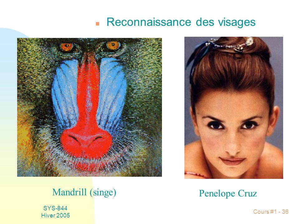 SYS-844 Hiver 2005 Cours #1 - 36 n Reconnaissance des visages Mandrill (singe) Penelope Cruz