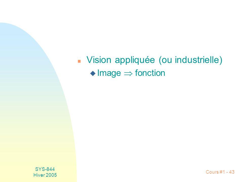 SYS-844 Hiver 2005 Cours #1 - 43 n Vision appliquée (ou industrielle) u Image fonction