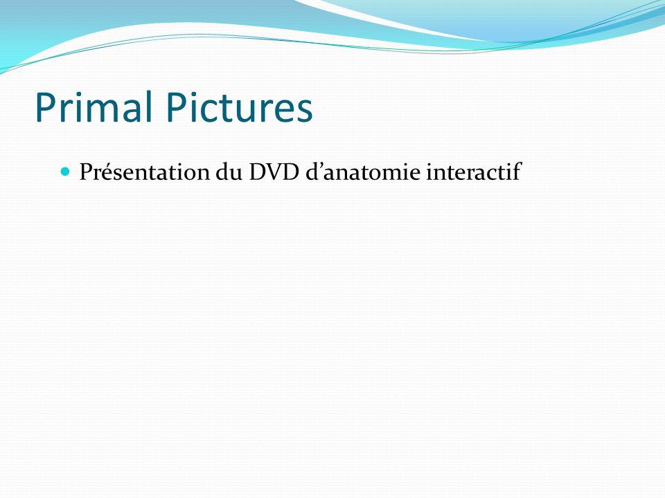Primal Pictures Présentation du DVD danatomie interactif