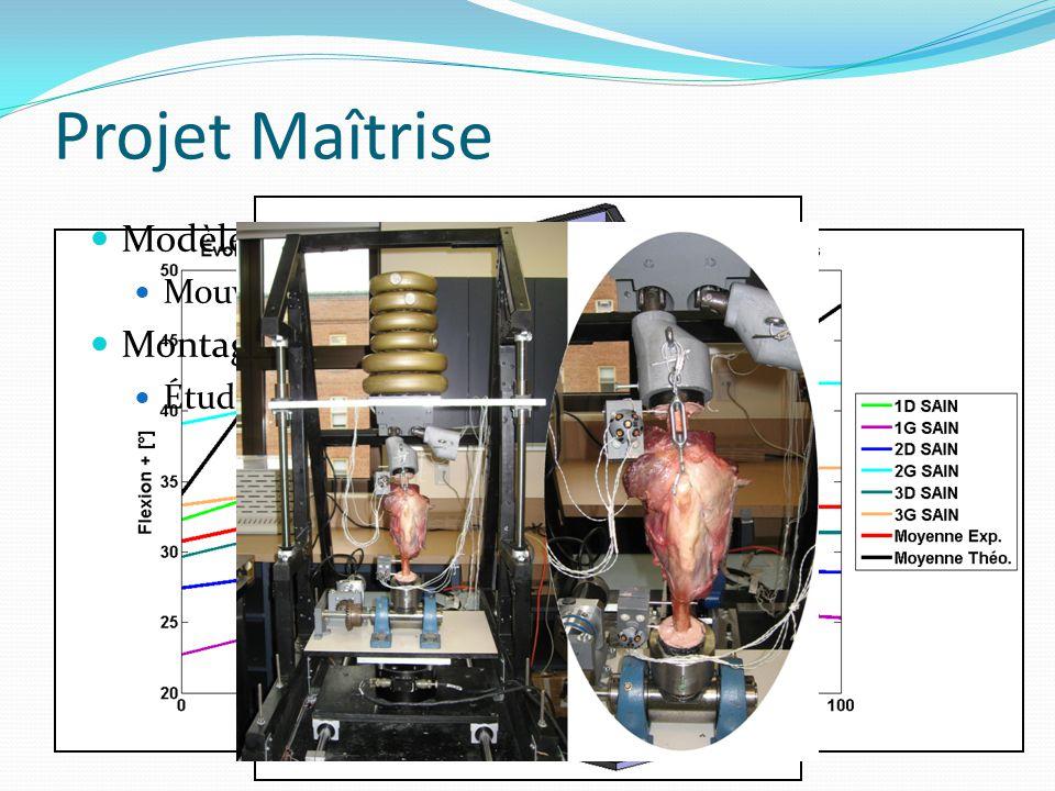 Modèle théorique : Mouvements des os + forces Montage expérimental Études des mouvements 3D du genou (a) (b) Pelv is Fémur Tibia Tarse Bâti Projet Maî