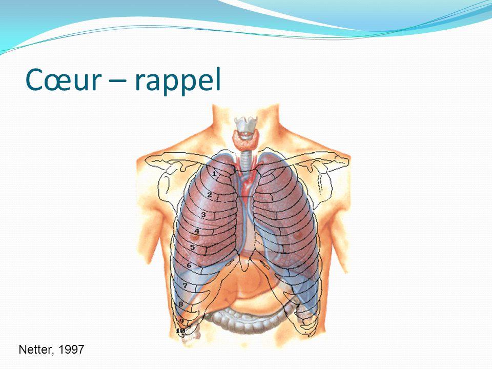 Cœur – rappel Netter, 1997
