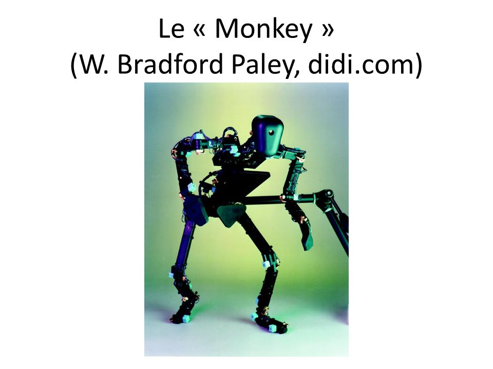 Le « Monkey » (W. Bradford Paley, didi.com)