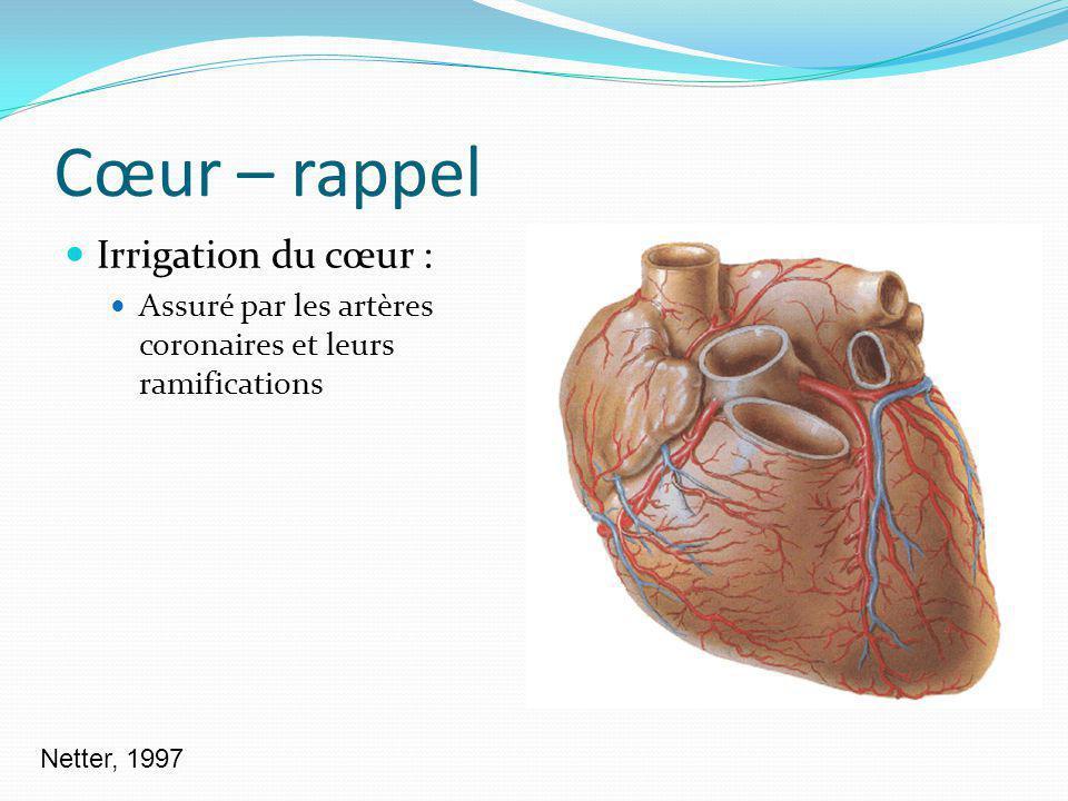Cœur – rappel Irrigation du cœur : Assuré par les artères coronaires et leurs ramifications Netter, 1997