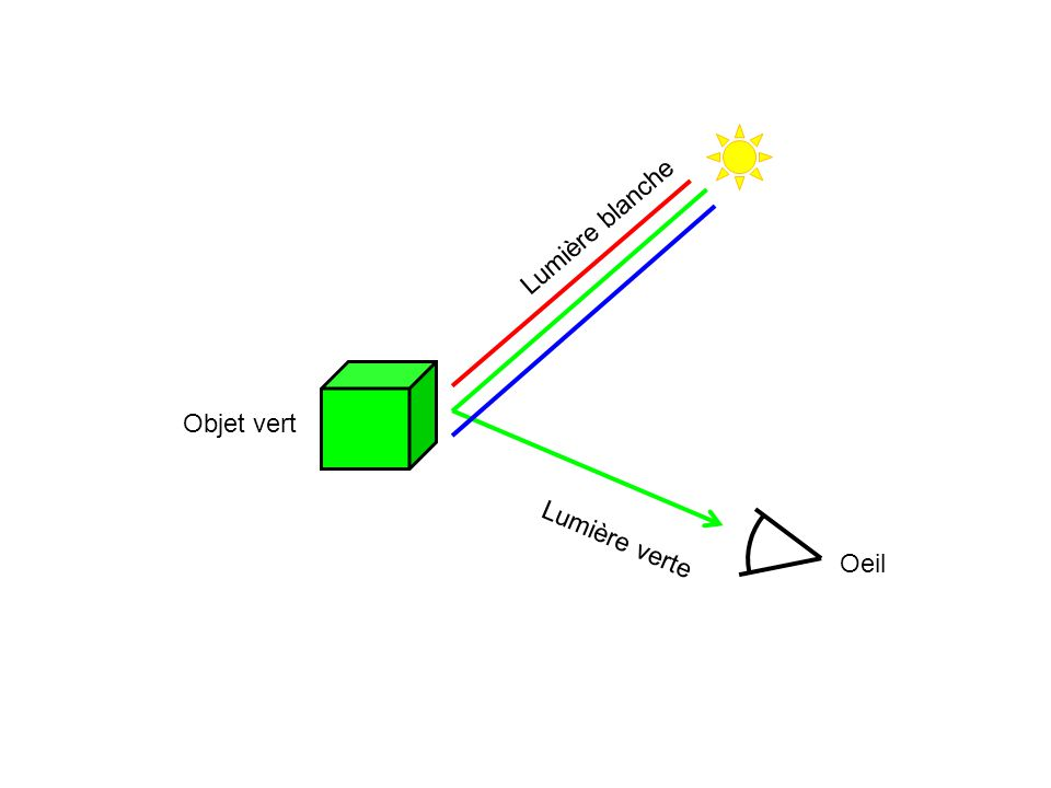 Lumière blanche Lumière verte Objet vert Oeil