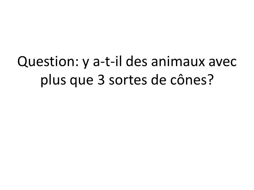 Question: y a-t-il des animaux avec plus que 3 sortes de cônes?