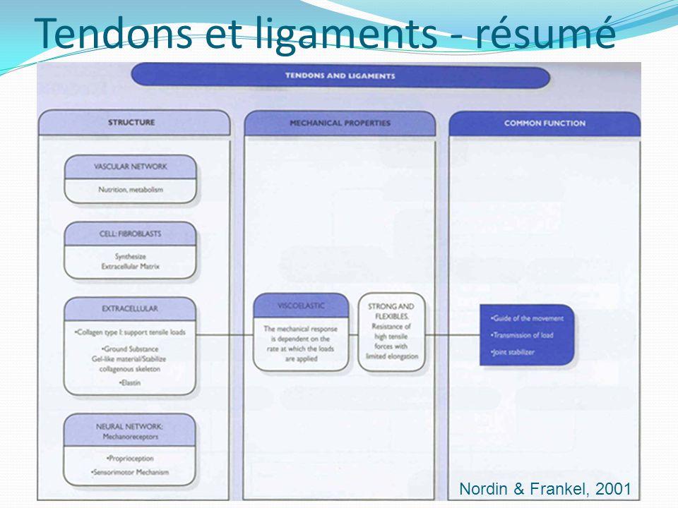 Nordin & Frankel, 2001 Tendons et ligaments - résumé
