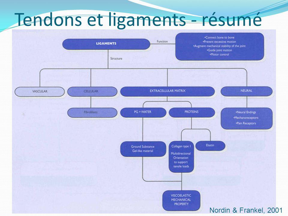 Tendons et ligaments - résumé Nordin & Frankel, 2001