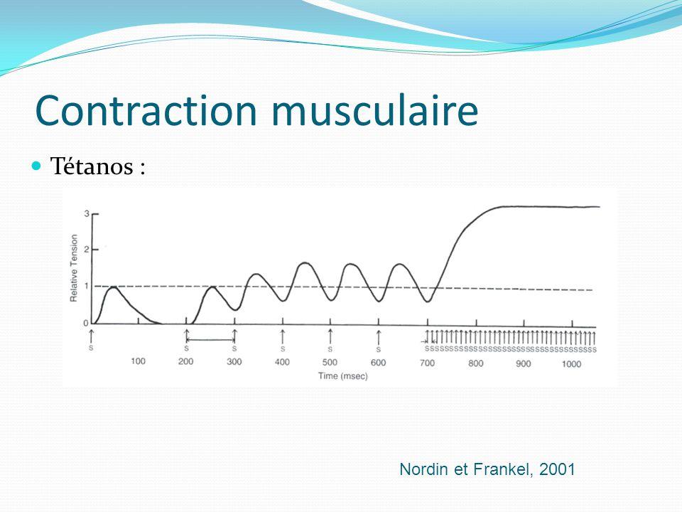 Contraction musculaire Tétanos : Nordin et Frankel, 2001