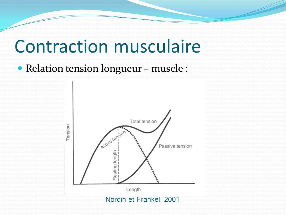 Contraction musculaire Relation tension longueur – muscle : Nordin et Frankel, 2001