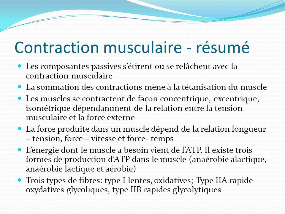 Contraction musculaire - résumé Les composantes passives sétirent ou se relâchent avec la contraction musculaire La sommation des contractions mène à