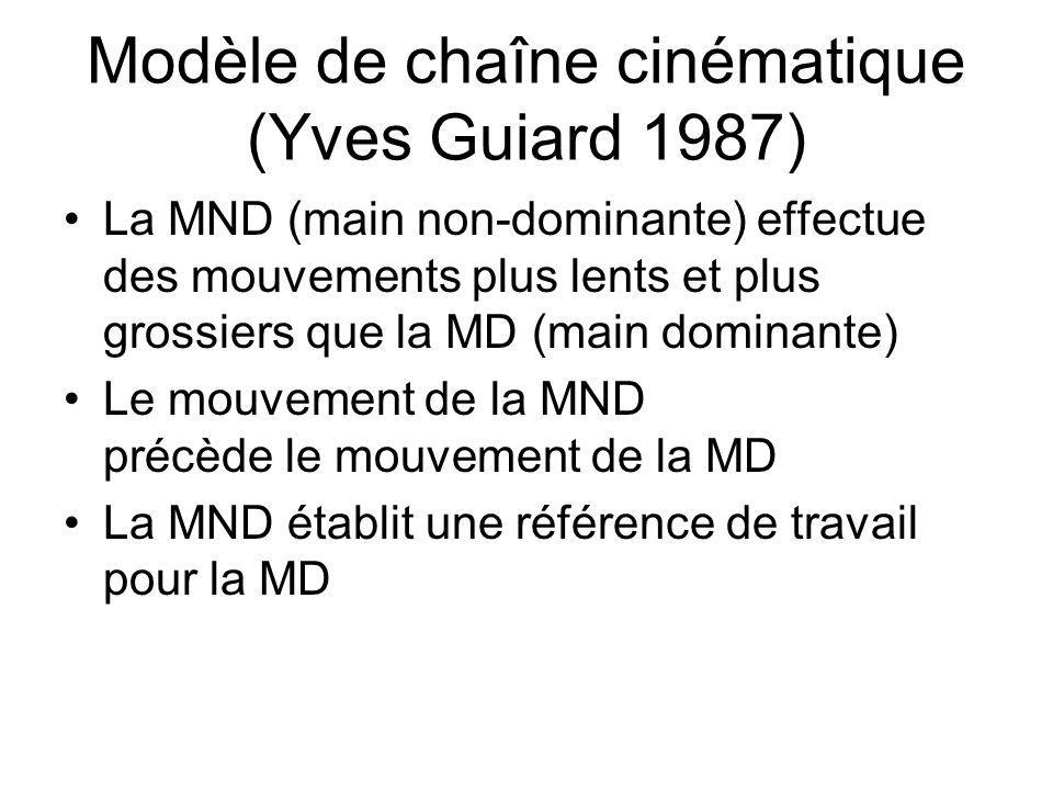 Modèle de chaîne cinématique (Yves Guiard 1987) La MND (main non-dominante) effectue des mouvements plus lents et plus grossiers que la MD (main domin