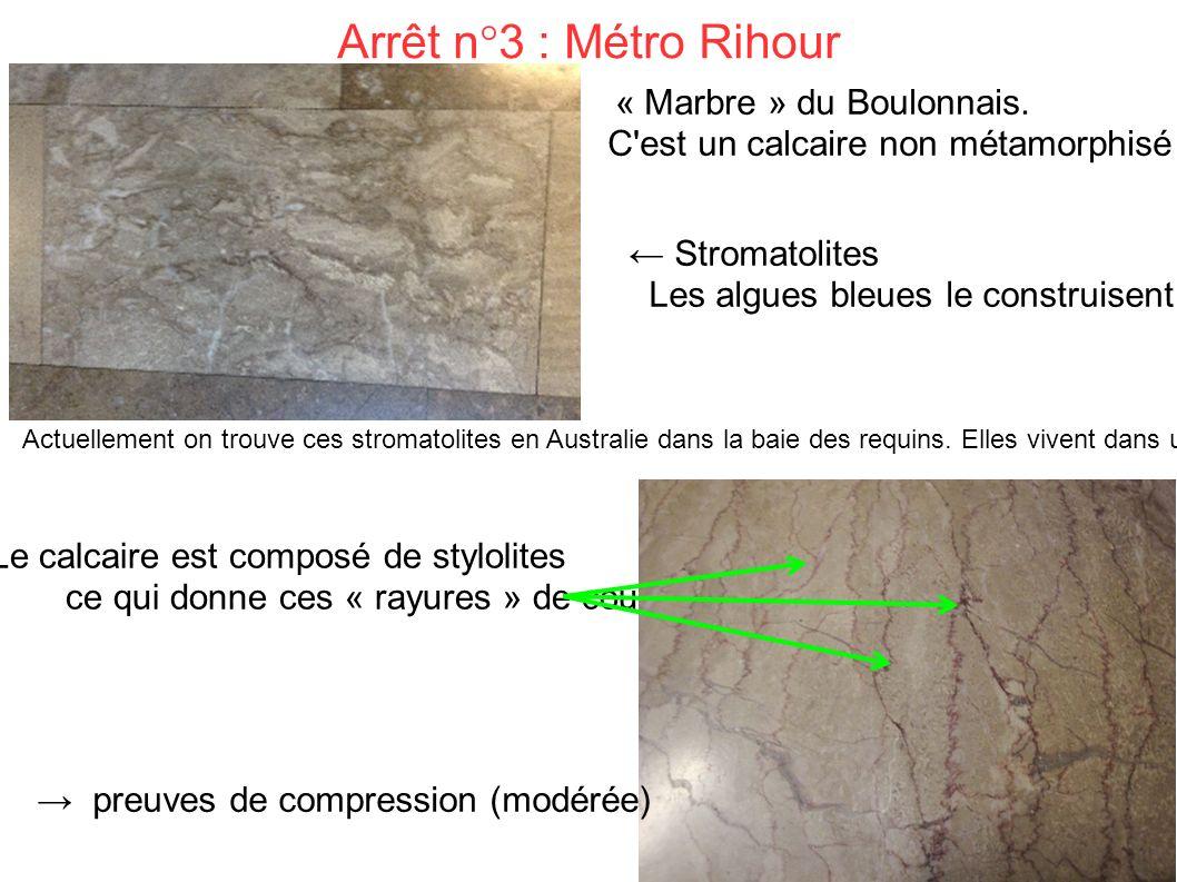 Arrêt n°3 : Métro Rihour « Marbre » du Boulonnais.