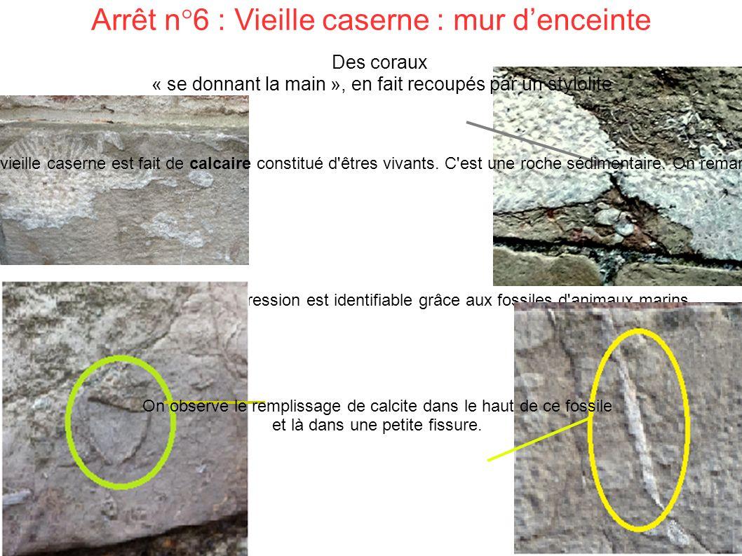 Arrêt n°6 : Vieille caserne : mur d'enceinte Le phénomène de transgression est identifiable grâce aux fossiles d animaux marins.