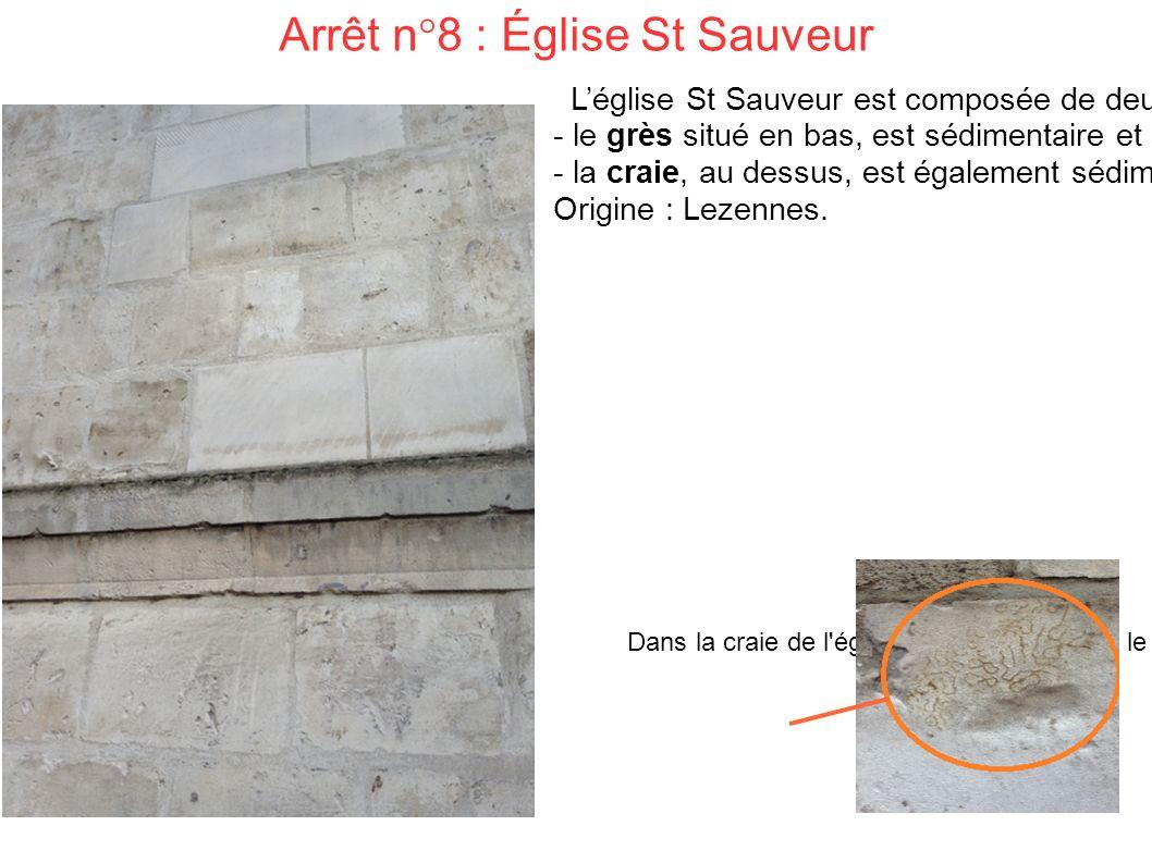 Arrêt n°8 : Église St Sauveur L'église St Sauveur est composée de deux roches différentes : - le grès situé en bas, est sédimentaire et souvent utilisé pour bâtir les monuments car il est solide et imperméable.