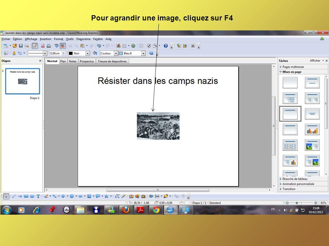 Pour agrandir une image, cliquez sur F4