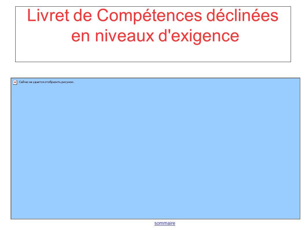 Livret de Compétences déclinées en niveaux d exigence sommaire