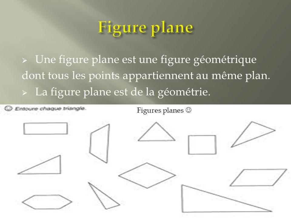  Une figure plane est une figure géométrique dont tous les points appartiennent au même plan.