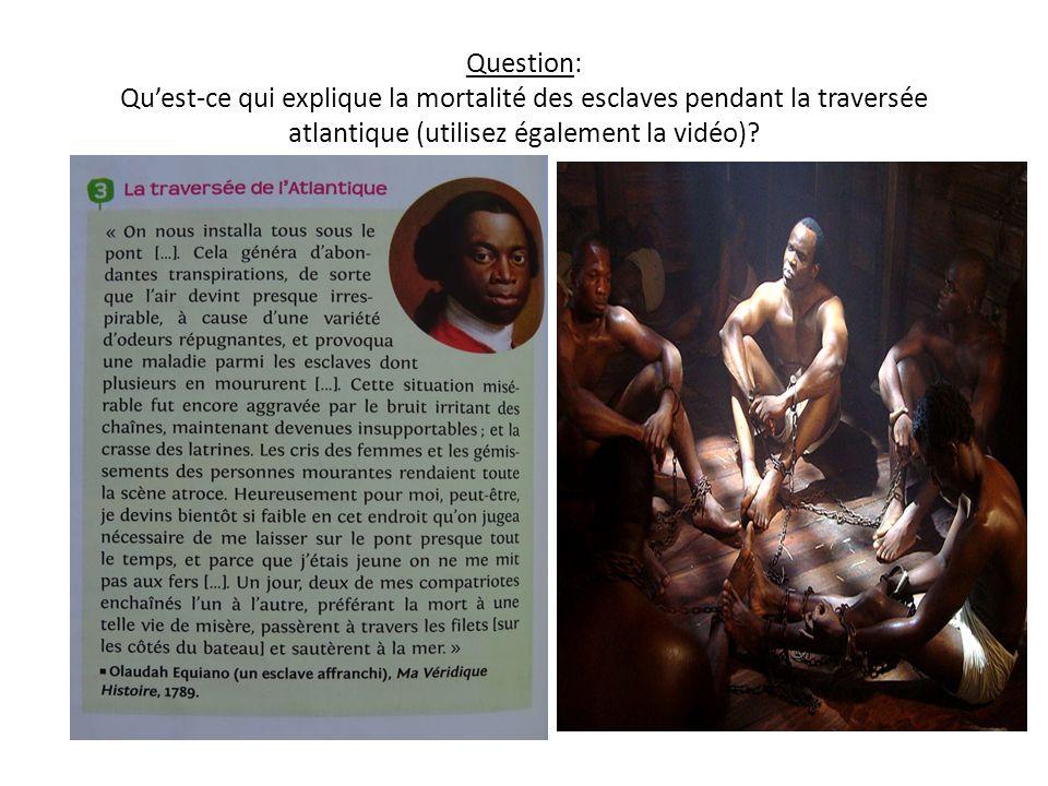 Question: Qu'est-ce qui explique la mortalité des esclaves pendant la traversée atlantique (utilisez également la vidéo)