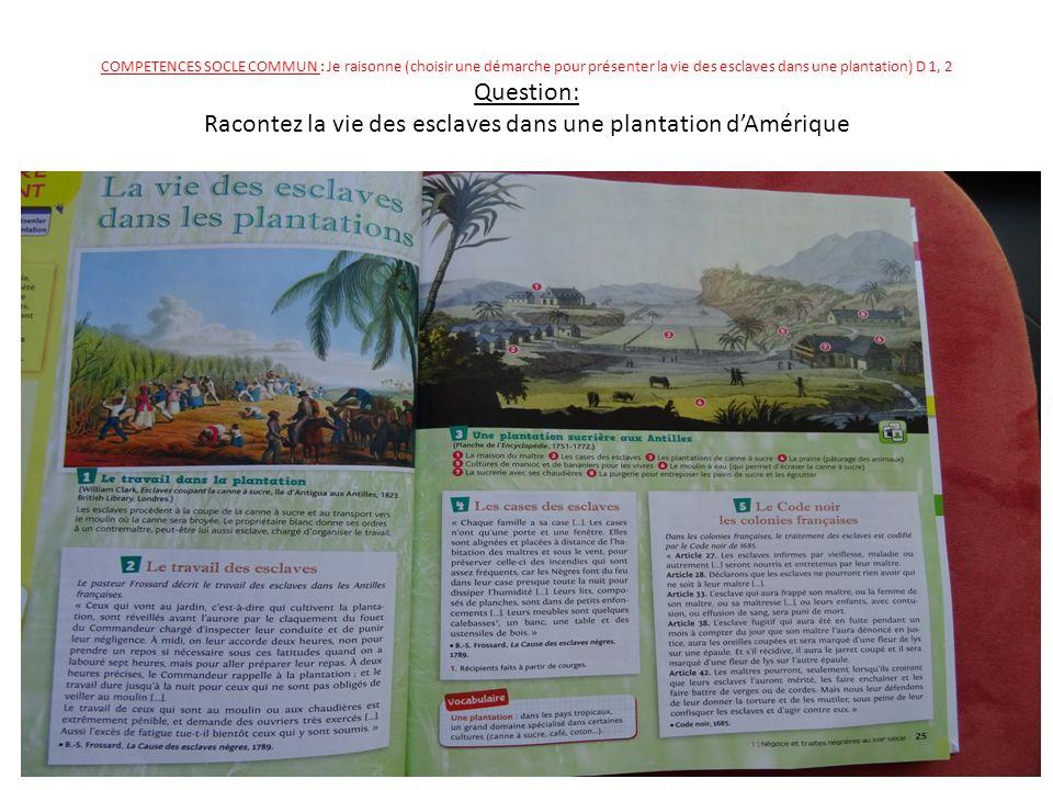 COMPETENCES SOCLE COMMUN : Je raisonne (choisir une démarche pour présenter la vie des esclaves dans une plantation) D 1, 2 Question: Racontez la vie des esclaves dans une plantation d'Amérique