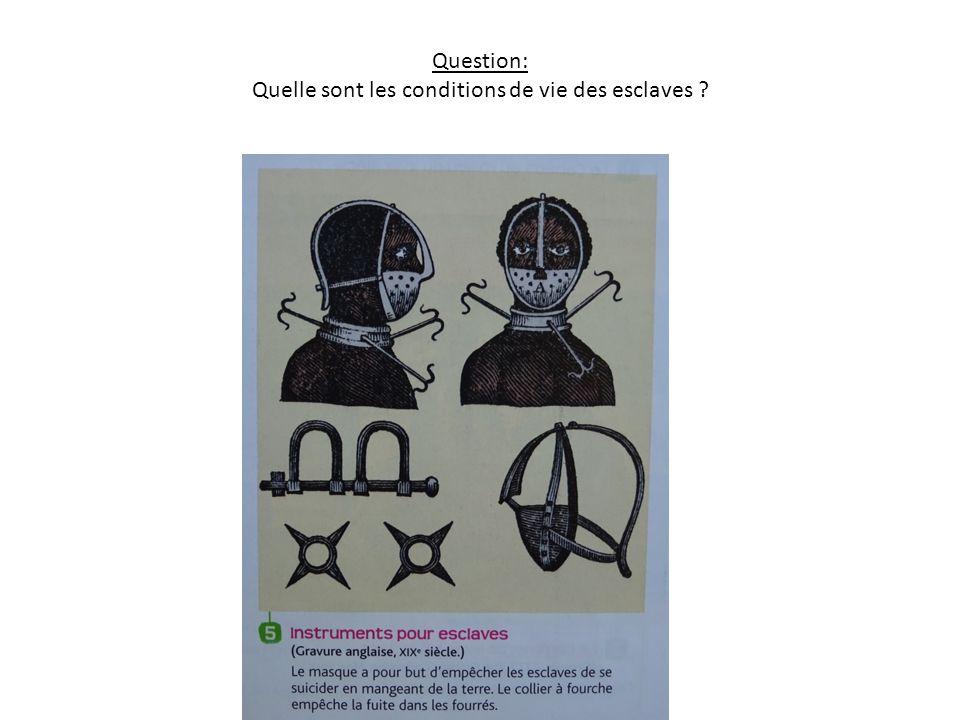 Question: Quelle sont les conditions de vie des esclaves