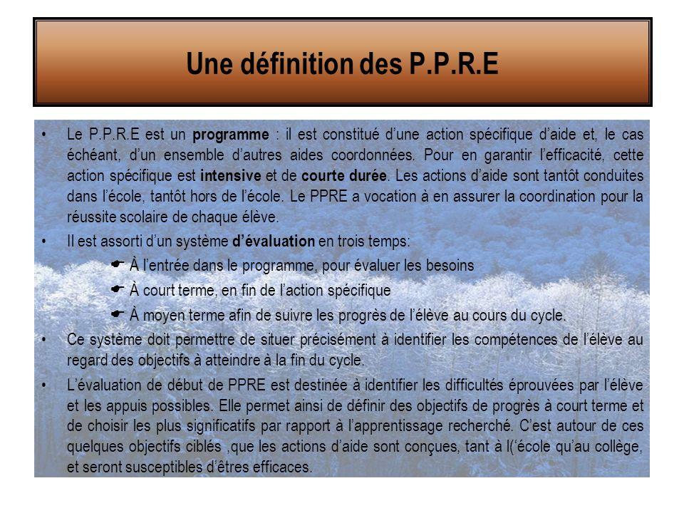 Le P.P.R.E est un programme : il est constitué d'une action spécifique d'aide et, le cas échéant, d'un ensemble d'autres aides coordonnées.