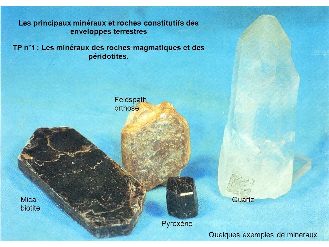 Mica biotite Pyroxène Feldspath orthose Quartz Les principaux minéraux et roches constitutifs des enveloppes terrestres TP n°1 : Les minéraux des roches magmatiques et des péridotites.