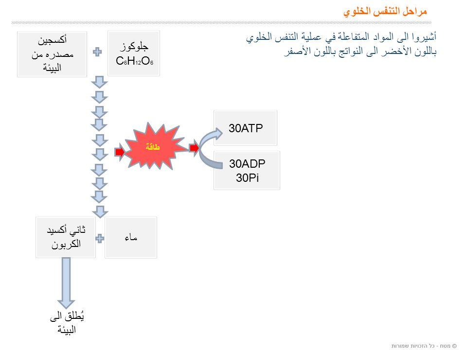 مراحل التنفس الخلوي جلوكوز C 6 H 12 O 6 ماء ثاني أكسيد الكربون يُطلق الى البيئة طاقة أكسجين مصدره من البيئة 30ADP 30Pi 30ATP أشيروا الى المواد المتفاعلة في عملية التنفس الخلوي باللون الأخضر الى النواتج باللون الأصفر