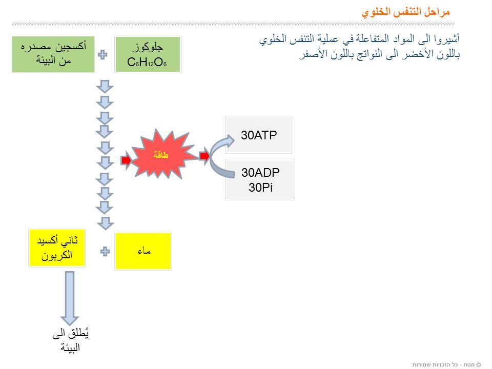 مراحل التنفس الخلوي يُطلق الى البيئة طاقة 30ADP 30Pi 30ATP أشيروا الى المواد المتفاعلة في عملية التنفس الخلوي باللون الأخضر الى النواتج باللون الأصفر جلوكوز C 6 H 12 O 6 أكسجين مصدره من البيئة ثاني أكسيد الكربون ماء