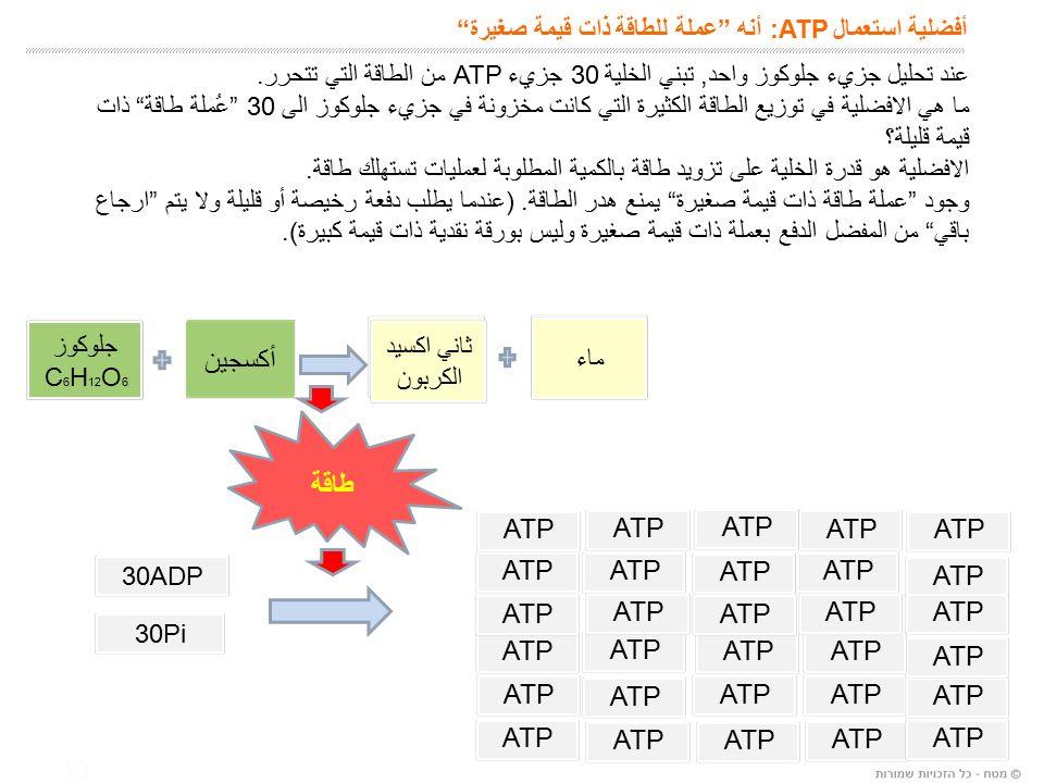 19 أفضلية استعمال :ATP أنه عملة للطاقة ذات قيمة صغيرة عند تحليل جزيء جلوكوز واحد, تبني الخلية 30 جزيء ATP من الطاقة التي تتحرر.