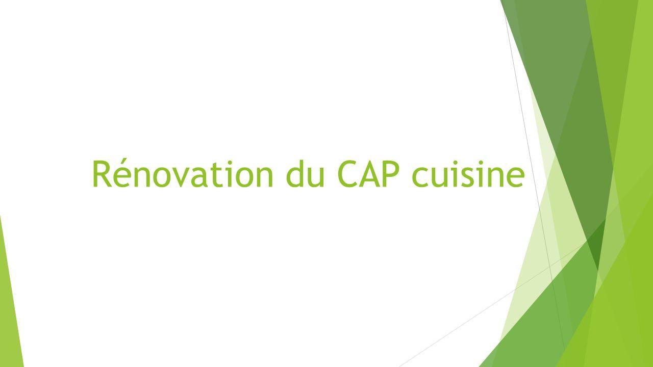 rénovation du cap cuisine. définition le titulaire du certificat d ... - Renovation Cuisine Professionnelle