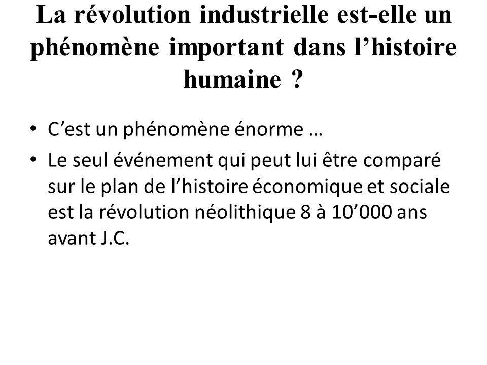 La révolution industrielle est-elle un phénomène important dans l'histoire humaine .