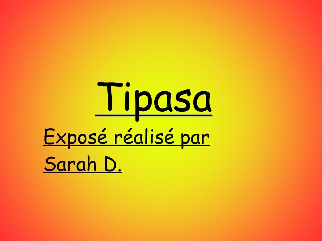 Tipasa Exposé réalisé par Sarah D.