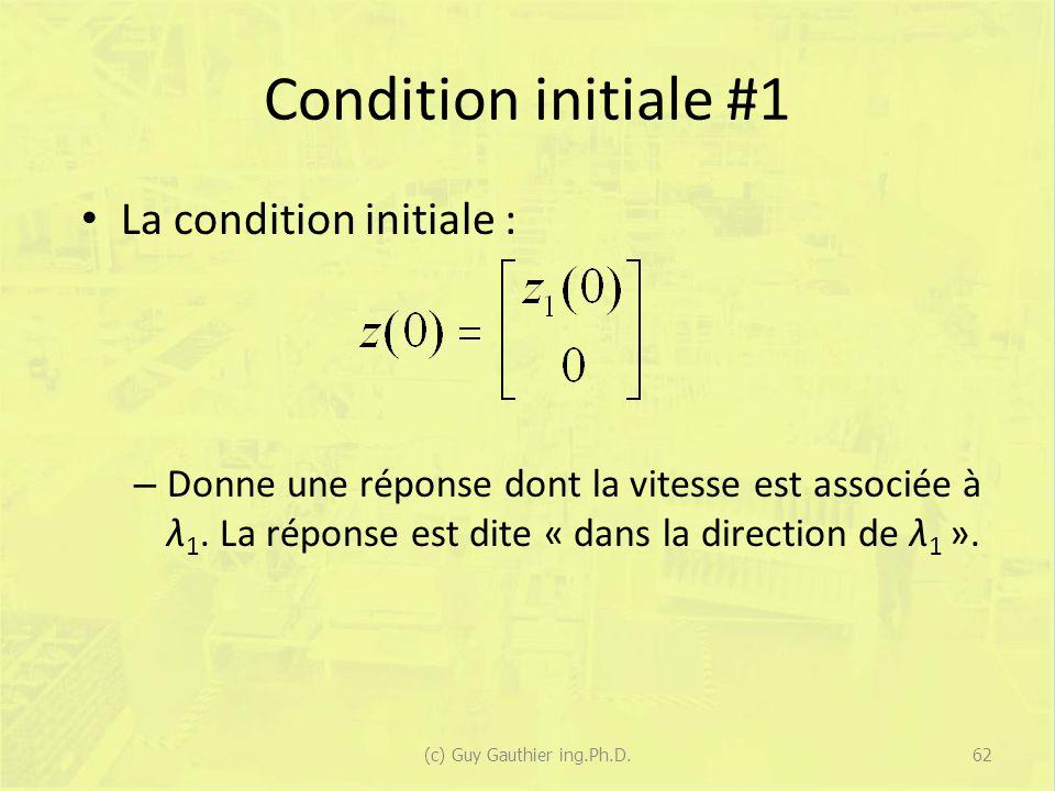 Condition initiale #1 La condition initiale : – Donne une réponse dont la vitesse est associée à λ 1.
