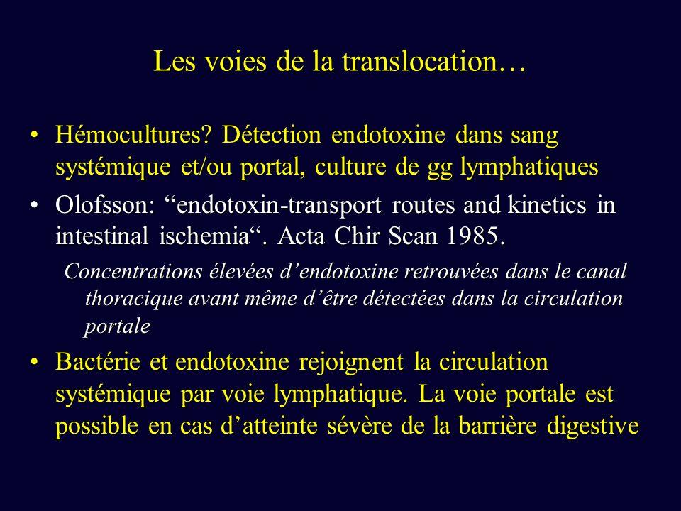 Translocation microbienne & SDMV .