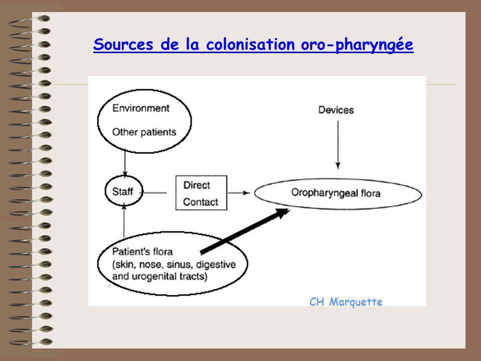Sources de la colonisation oro-pharyngée CH Marquette