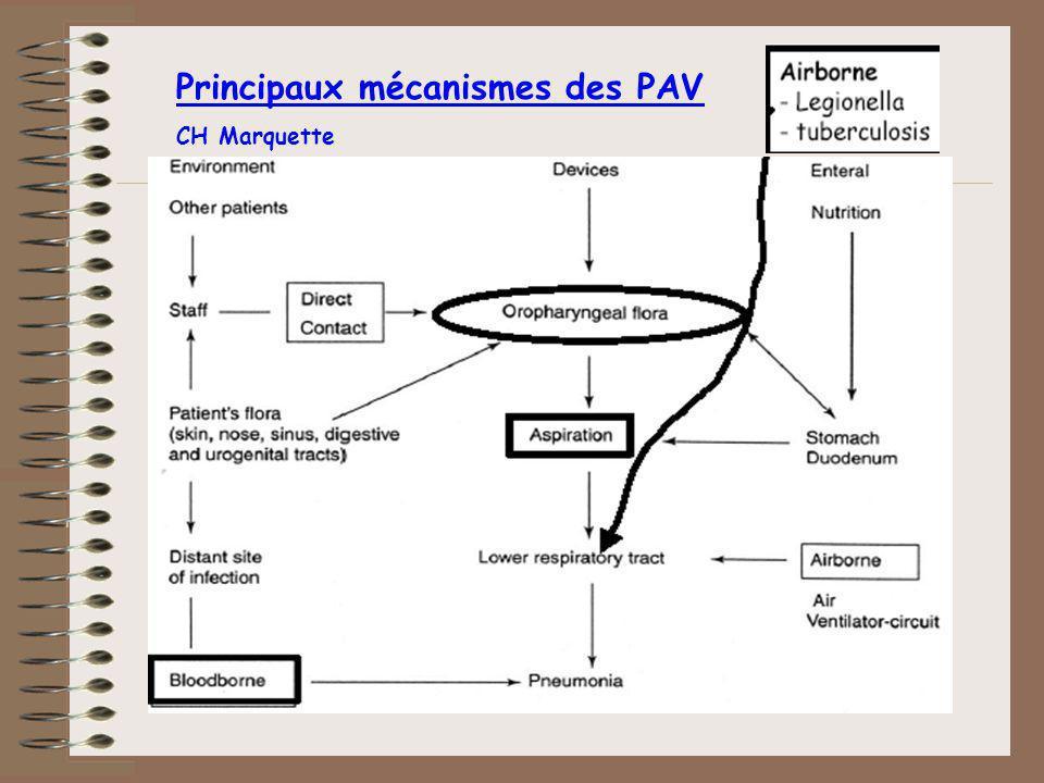 Conditions prédisposantes (1) Terrain: âge obésité dénutrition immunosuppression BPCO insuffisance rénale pathologie chirurgicale coma score Apache II >15 Kollef M.H.,JAMA 1993;270:1965-70 Torres A, Am Rev Respir Dis 1990;142:523-8