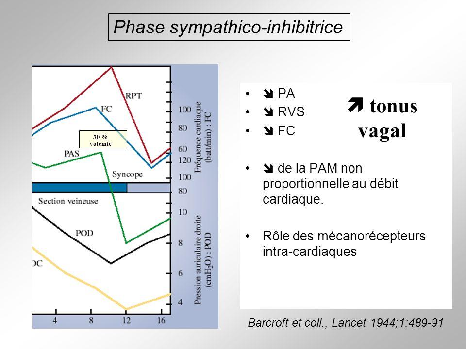 Phase sympathico-inhibitrice PA RVS FC de la PAM non proportionnelle au débit cardiaque. Rôle des mécanorécepteurs intra-cardiaques tonus vagal Barcro