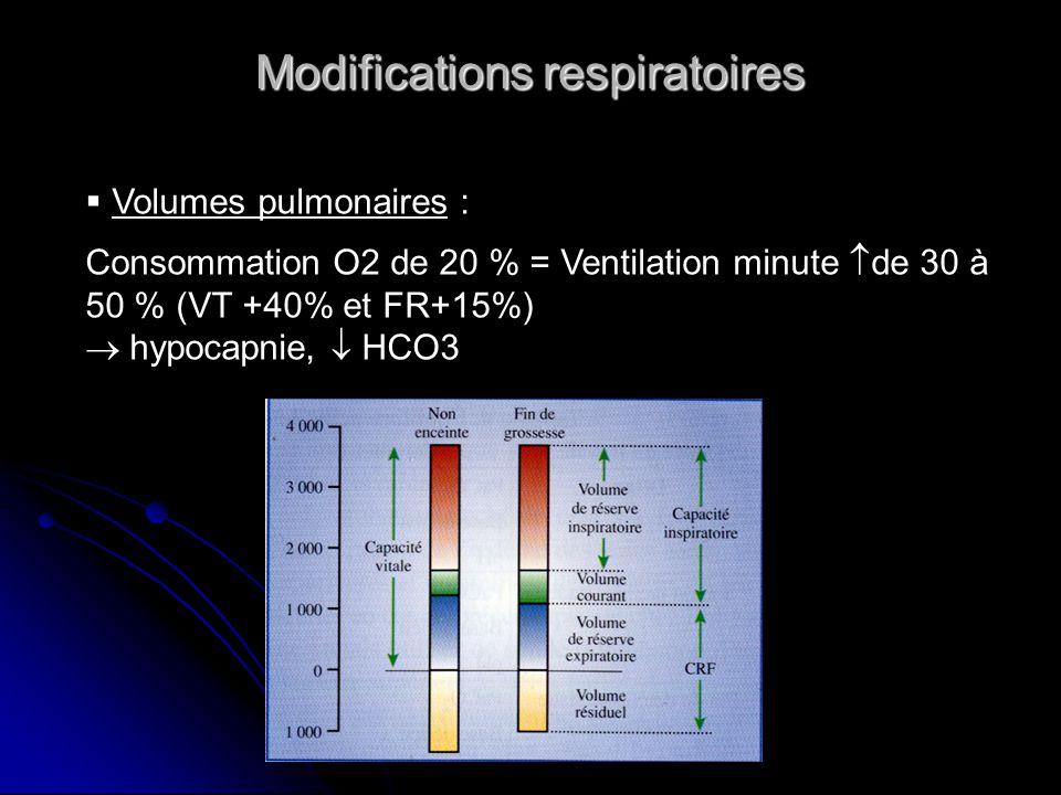 Modifications respiratoires Volumes pulmonaires : Consommation O2 de 20 % = Ventilation minute de 30 à 50 % (VT +40% et FR+15%) hypocapnie, HCO3