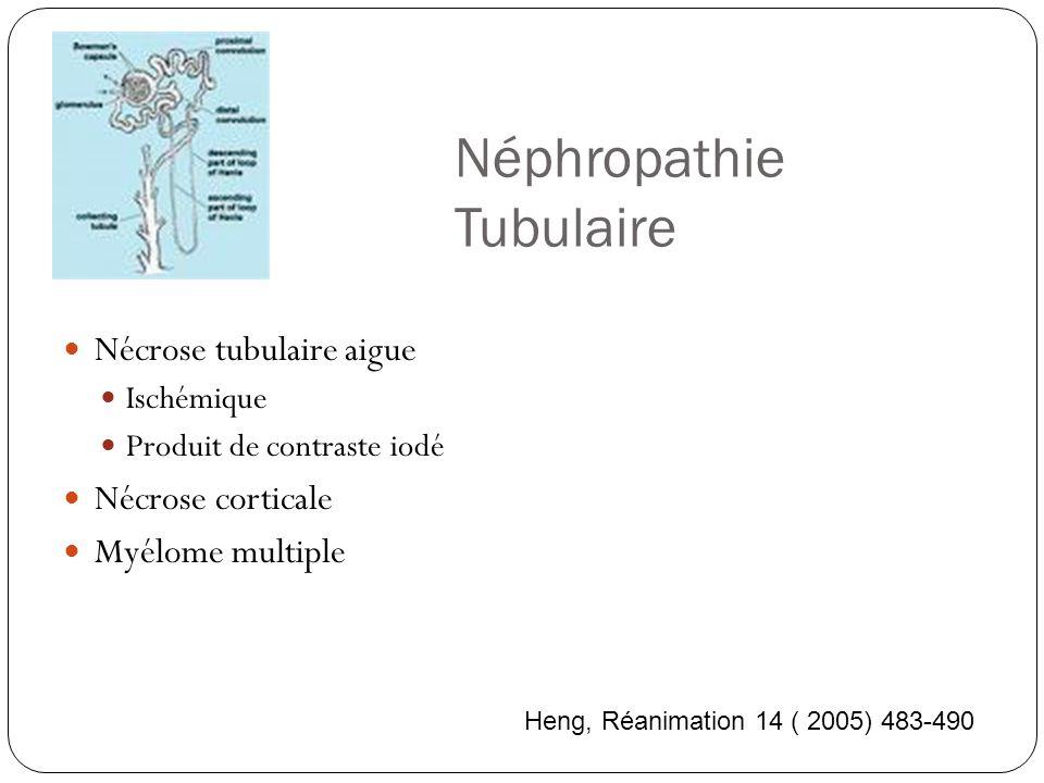Néphropathie Tubulaire Nécrose tubulaire aigue Ischémique Produit de contraste iodé Nécrose corticale Myélome multiple Heng, Réanimation 14 ( 2005) 483-490